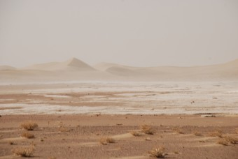 China's deserts: dust sources for the world.
