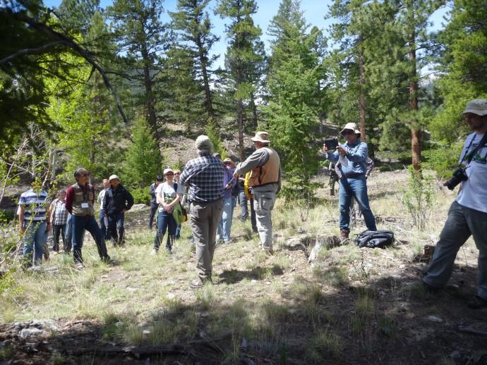 Paleoseismologists staring at faults