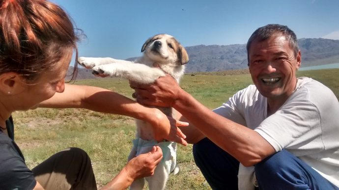 Our drive back to Almaty become much more interesting than I thought it would be when our driver bought a puppy the day before we left.