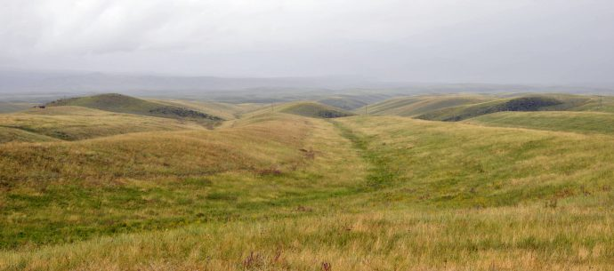 Offset linear ridges.