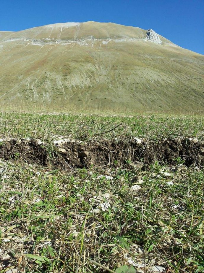 Surface faulting along the splay running in the Castelluccio Plain. Here Galadini&Galli 2003 opened three tranches founding evidences of repeated events in the Late Holocene, the last one before the 6th cent. AD. Behind the Vettore slope with the surface faulting along two other splays