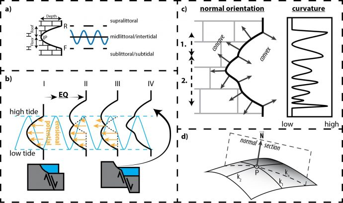 Geometry of Tidal Notches